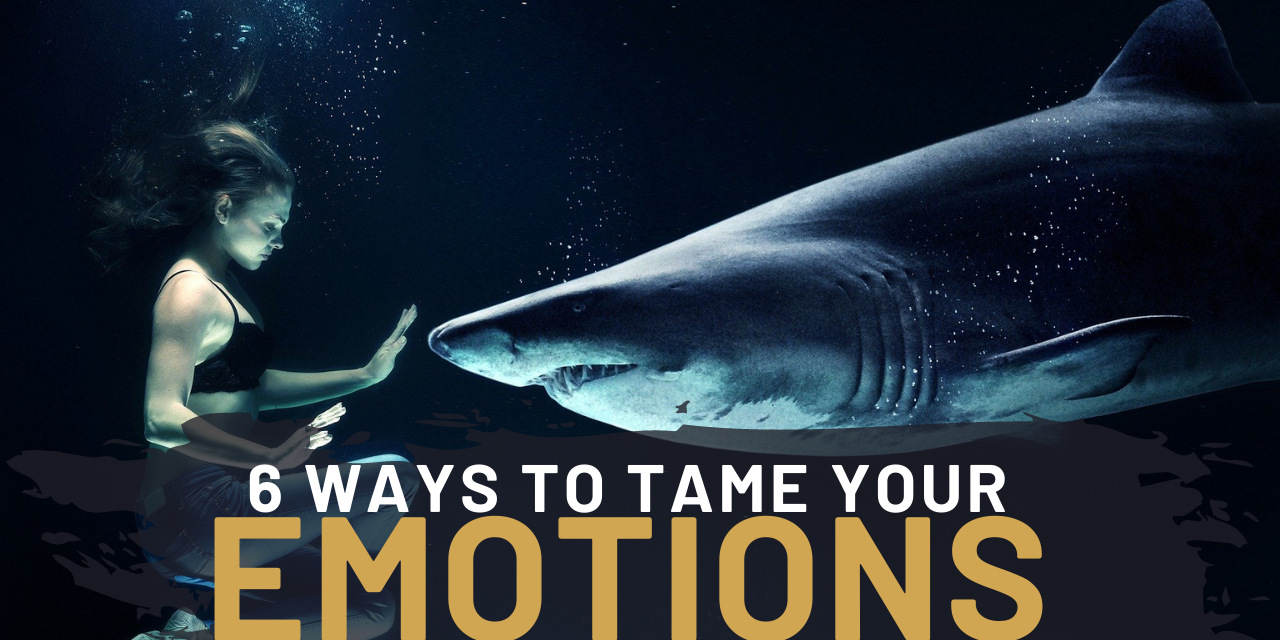 How To Tame Your Emotions